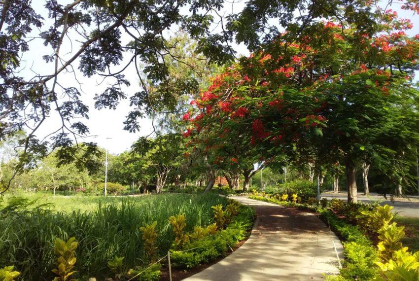 Sybaris-Suites-Residences-jardin